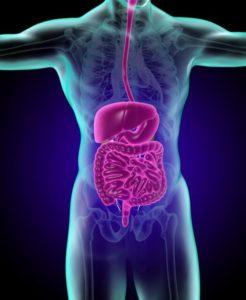 大腸ポリープの大きさとがんの関係性について